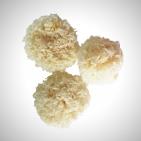 Грибы коралловые сушеные Инъер (гребешки) 1 кг